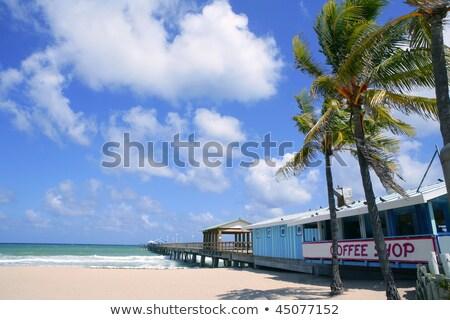Fort lauderdale spiaggia cafe tropicali palme cielo blu Foto d'archivio © lunamarina