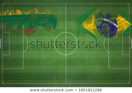 Brazília Litvánia zászlók puzzle izolált fehér Stock fotó © Istanbul2009
