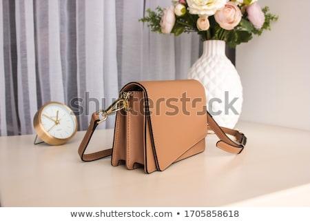 Vintage · кожа · сумку · моде - Сток-фото © kitch