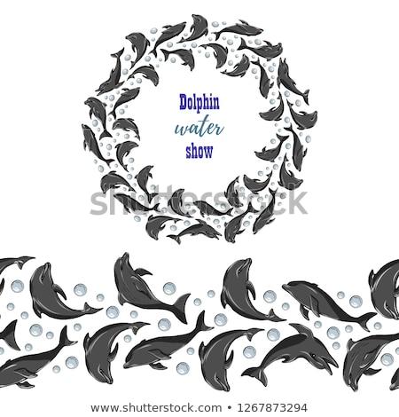 Dolfijn frame illustratie water glimlach natuur Stockfoto © adrenalina
