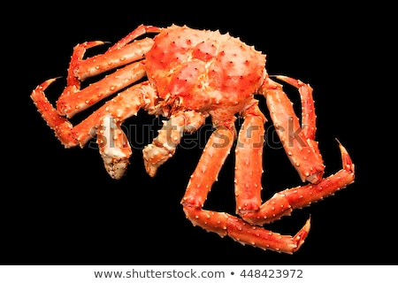 Roşu rege crab izolat negru Imagine de stoc © nasonov