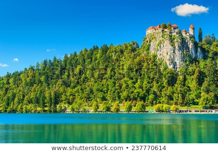 Bled and mountains, Slovenia Stock photo © dezign80