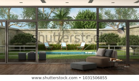 a window with a view of the palm plant outdoor stock photo © bluering