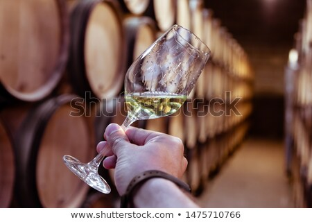 Chardonnay Stock photo © Hofmeester