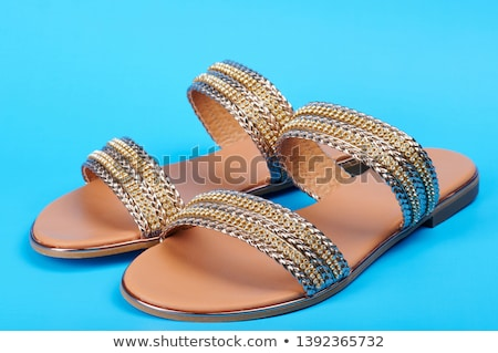 Pair of blue sandals Stock photo © bluering