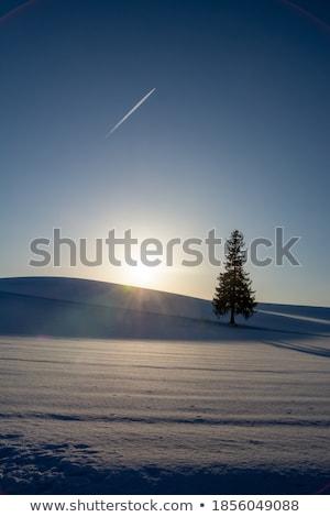 jato · condensação · trilha · avião · quatro - foto stock © suerob