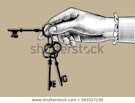 Vecteur touches isolé blanche affaires maison Photo stock © ordogz