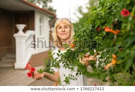 Kadın poz çiçek çalı moda Stok fotoğraf © deandrobot