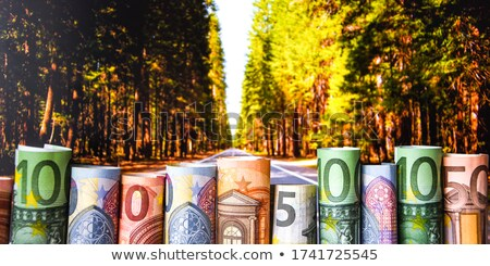 Euro banknotes cash money in soil ground, income in agriculture Stock photo © stevanovicigor