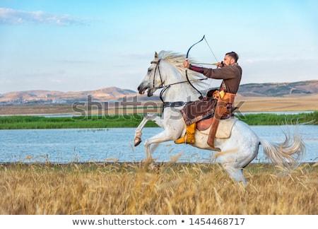 воин лучник верхом вектора черно белые природы Сток-фото © gintaras
