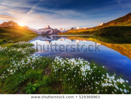 Panorama of Mt. Schreckhorn and Wetterhorn above Bachalpsee lake Stock photo © Leonidtit