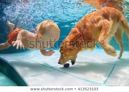 Boy with dog about to jump into pool Stock photo © IS2