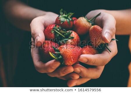 taze · çilek · çiftçiler · eller · taze · meyve · çiftçi - stok fotoğraf © mythja