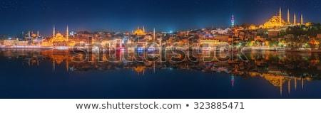 Панорама Стамбуле мнение синий мечети закат Сток-фото © Givaga