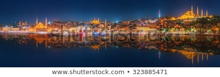 Panorama of Istanbul  Stock photo © Givaga