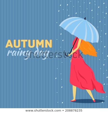 molhado · guarda-chuva · vermelho · chuva · cair · objeto - foto stock © linetale