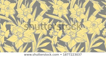 Abrótea desenho animado ilustração olhando flor Foto stock © cthoman