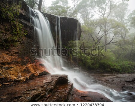 Fog and mist at Weeping Rock Wentworth Falls Stock photo © lovleah