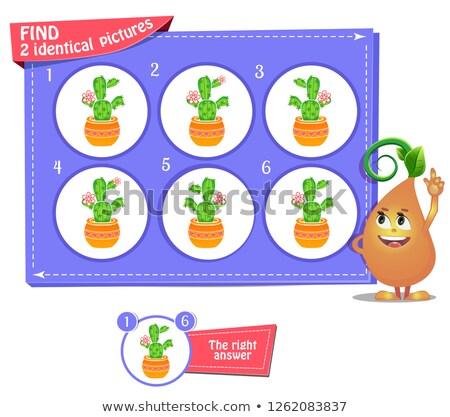 Azonos kaktusz játék gyerekek felnőttek figyelem Stock fotó © Olena