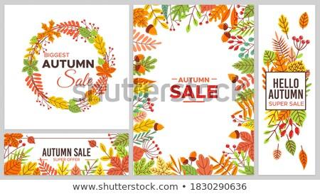 Super venda promo pôsteres bordo carvalho Foto stock © robuart