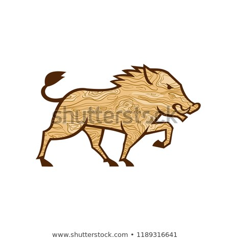 Wood Boar Marching Side Retro Stock photo © patrimonio