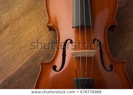Detail of old violin in vintage style on wood background Stock photo © brebca