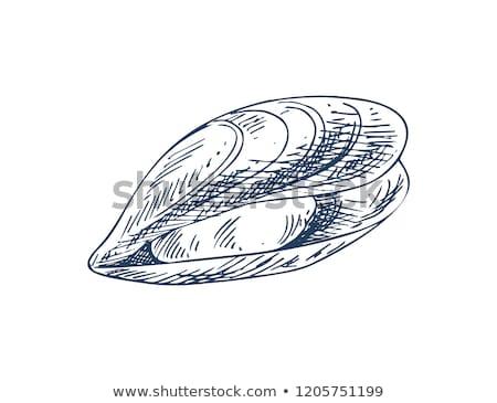 poissons · fruits · de · mer · signe · subaquatique · marines · alimentaire - photo stock © robuart