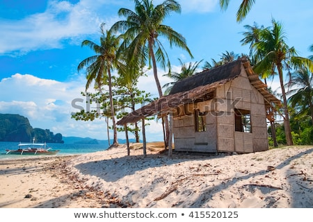 Verlaten eiland landschap illustratie water boom Stockfoto © bluering