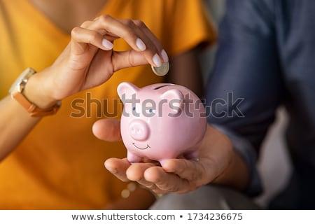 dinheiro · proteger · cifrão · cadeia · ilustração · 3d · segurança - foto stock © lightsource