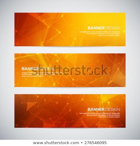 Web banner netwerk technologie Blauw Stockfoto © alexaldo