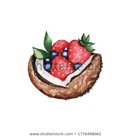 aquarel · kokosnoot · aardbei · bruin · restaurant · schilderij - stockfoto © conceptcafe