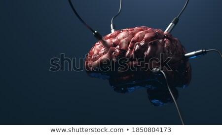 Médico cerebro humano bordo ilustración salud fondo Foto stock © colematt