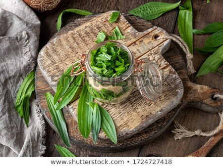 Preparation of ribwort plantain syrup against cough Stock photo © madeleine_steinbach