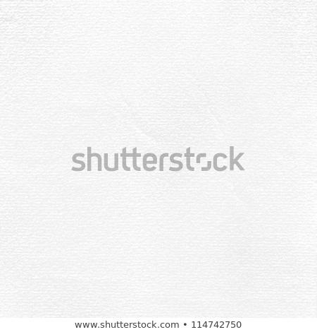 Oud papier grunge eps vector bestand muur Stockfoto © beholdereye