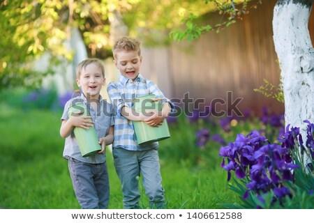 twee · knap · broers · vergadering · buiten - stockfoto © ElenaBatkova