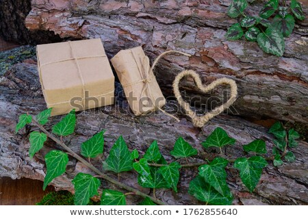 Heart made from tree bark on wooden background Stock photo © Melnyk