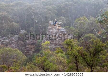 Kadın uzun yürüyüşe çıkan kimse mavi dağlar üst pagoda Stok fotoğraf © lovleah