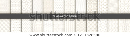 Sem costura geométrico preto e branco textura conjunto Foto stock © kup1984