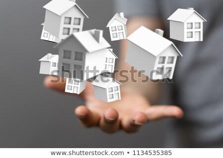 maschio · agente · immobiliare · miniatura · casa · Palm - foto d'archivio © andreypopov