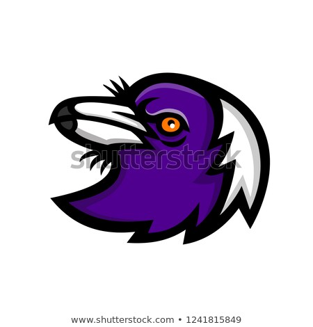 australian magpie head mascot stock photo © patrimonio