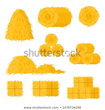 Foin élément meule de foin groupe Photo stock © Lightsource