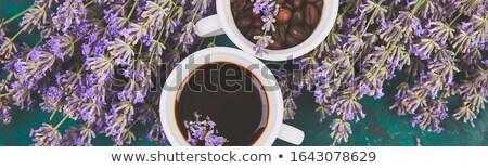 Bandeira café grão lavanda flor Foto stock © Illia