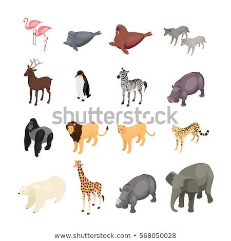 Girafă izometrice icoană vector semna culoare Imagine de stoc © pikepicture