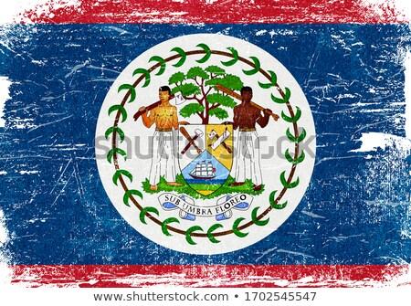Белиз Гранж флаг старые Vintage гранж текстур Сток-фото © HypnoCreative