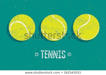 Teniszlabda vektor kép sablon rajz illusztrációk Stock fotó © chromaco
