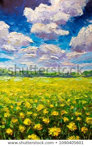 boyama · sarı · alan · boya · fırçası · çiçek · bahar - stok fotoğraf © pterwort