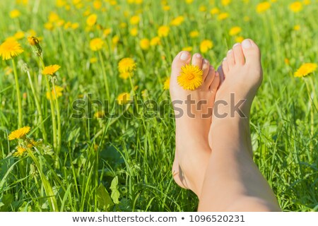 young barefoot woman sunbathing in the park stock photo © gsermek