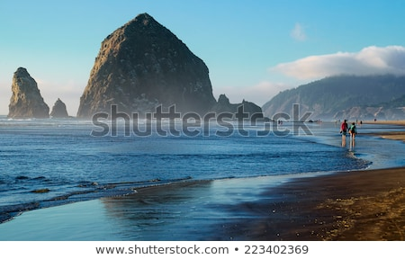 reflection of haystack rock at cannon beach stock photo © davidgn