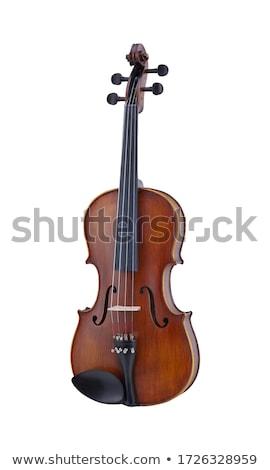 Viola Stock photo © chris2766