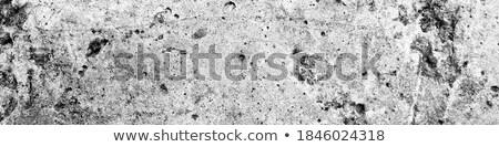 Parede granito parede de tijolos tijolo Foto stock © victor1978
